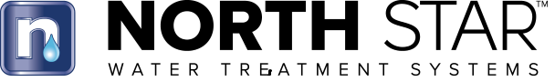 The Northstar Logo